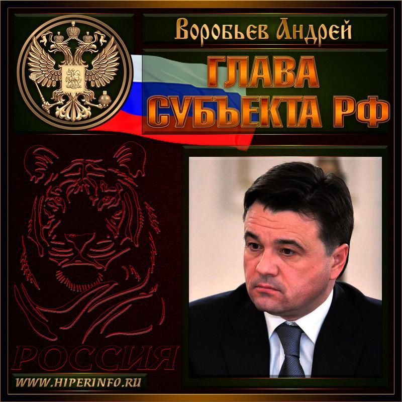 Воробьев Андрей Юрьевич